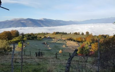 Vital help for our elderly ladies during the cold winter